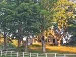 Victorian Horse Farm - Newcastle/Damariscotta