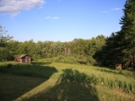 Period Cape on Lovely Rural Acreage: